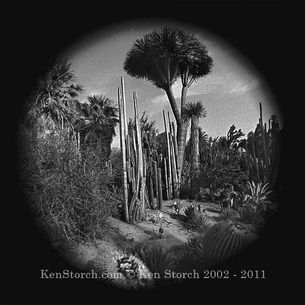 Desert Landscape - Exotica - Circular Camera Lens Hack